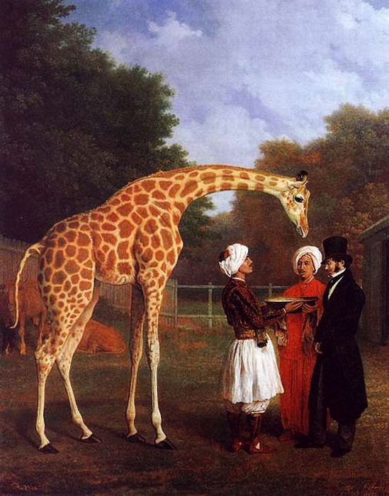 Jacques-Laurent Agasse Reproductions-The Nubian Giraffe, 1827