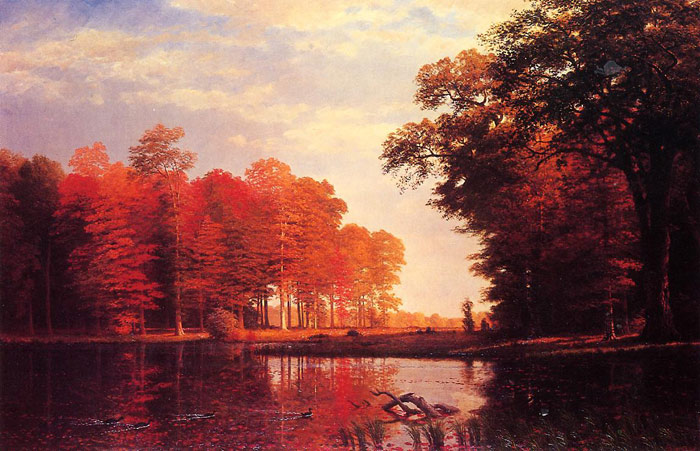 Autumn Woods , 1886	 Bierstadt, Albert Painting Reproductions