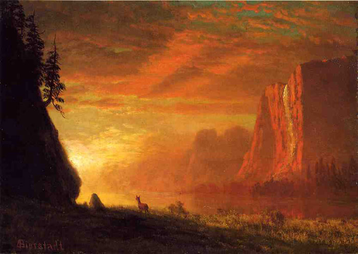 Paintings Reproductions Bierstadt, Albert Deer at Sunset