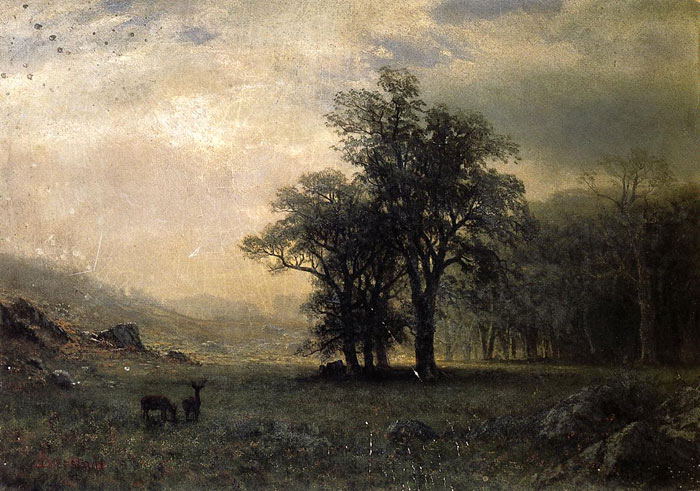 Paintings Reproductions Bierstadt, Albert Deer in a Landscape