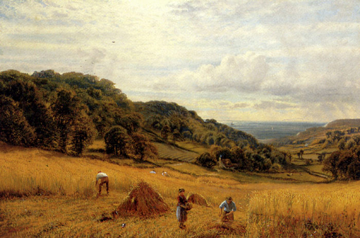 Paintings Reproductions Glendening, Alfred Harvesting At Luccombe, Isle Of Wight, 1870