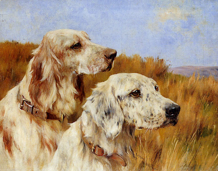 Two Setters Wardle, Arthur Painting Reproductions