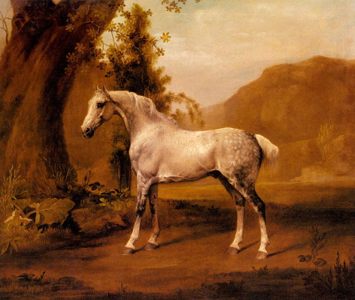 George Stubbs Reproductions-A Grey Stallion In a Landscape, c.1765