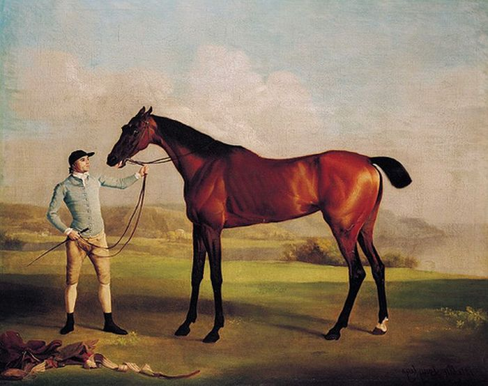 George Stubbs Reproductions-Molly Longlegs, 1762