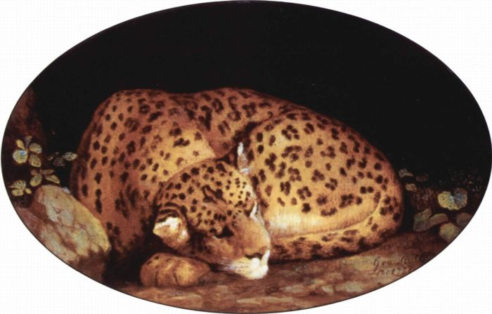 Paintings Reproductions Stubbs  George Leopard, 1780