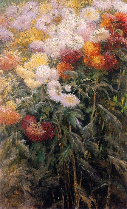 Paintings Reproductions Caillebotte, Gustave Chrysanthemums, Garden at Petit Gennevilliers, 1893
