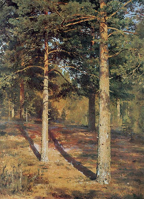 Ivan Shishkin Reproductions-The Sun-lit Pines, 1886