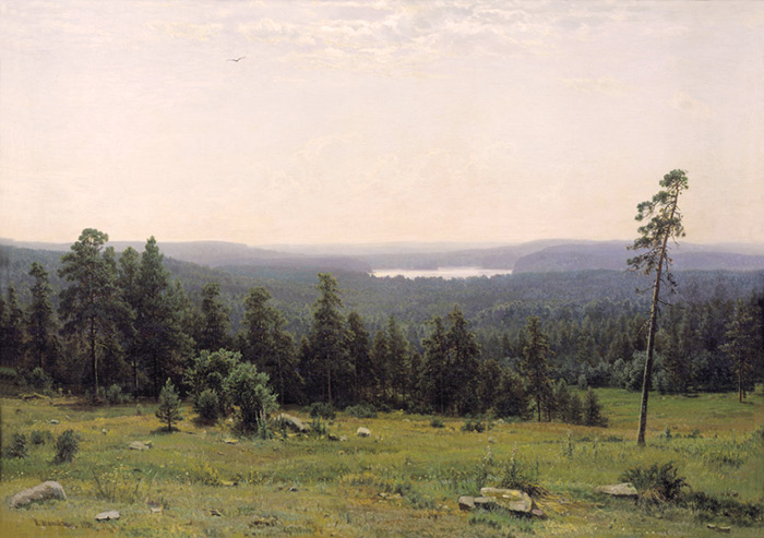 Ivan Shishkin Reproductions-The Forest Horizons. 1884
