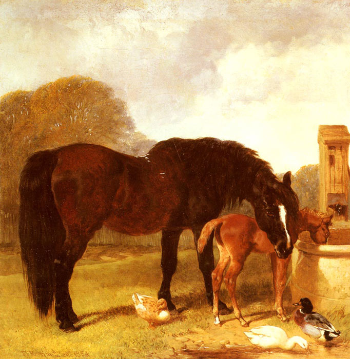 John Frederick Herring Snr Reproductions-Horse and Foal watering at a trough, 1854
