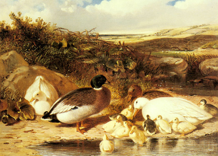 John Frederick Herring Snr Reproductions-Mallard Ducks and Ducklings on a River Bank, 1863