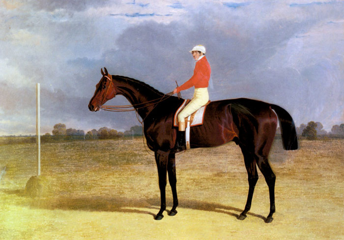 John Frederick Herring Snr Reproductions-A Dark Bay Racehorse with Patrick Connolly Up, 1833