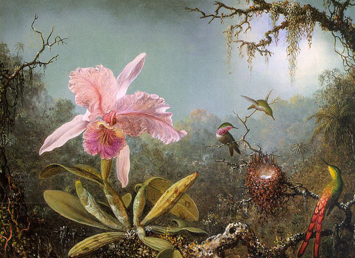 Martin Johnson Heade Reproductions-Cattleya Orchid and Three Brazilian Hummingbirds, 1871