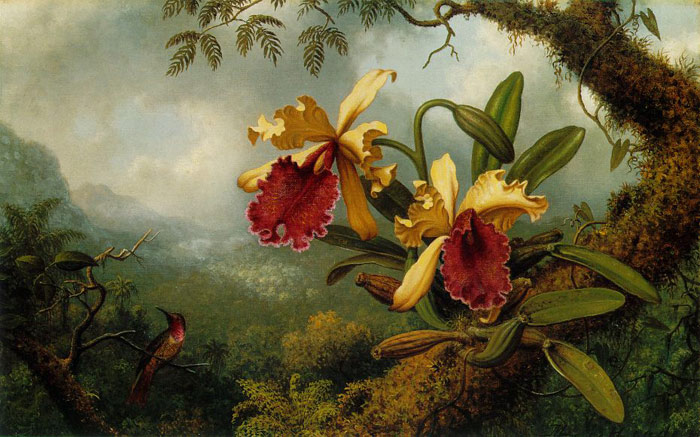Heade Paintings