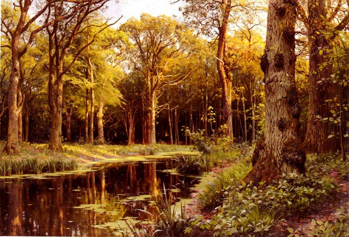 Peder Mork Monsted Reproductions-A Forest Stream, 1907