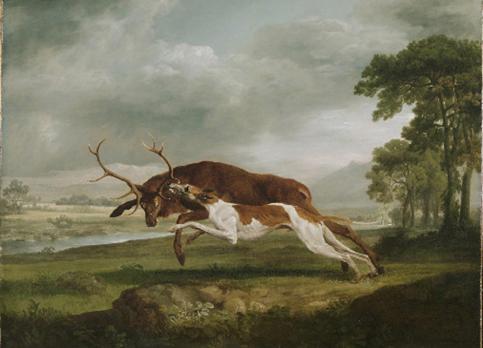 George Stubbs Reproductions-Hound Coursing a Stag, 1762