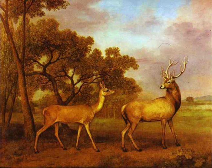 Paintings Reproductions Stubbs  George Red Deer Stag and Hind, 1972