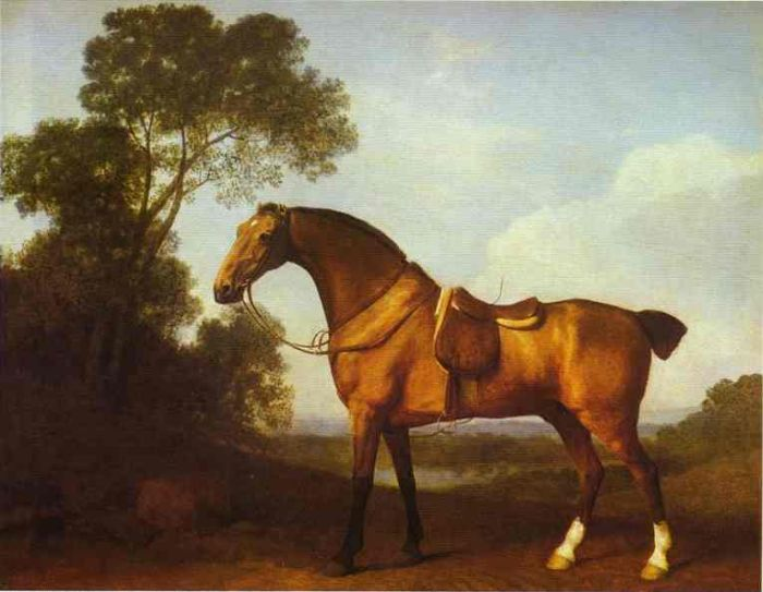 George Stubbs Reproductions-A Saddled Bay Hunter, 1768