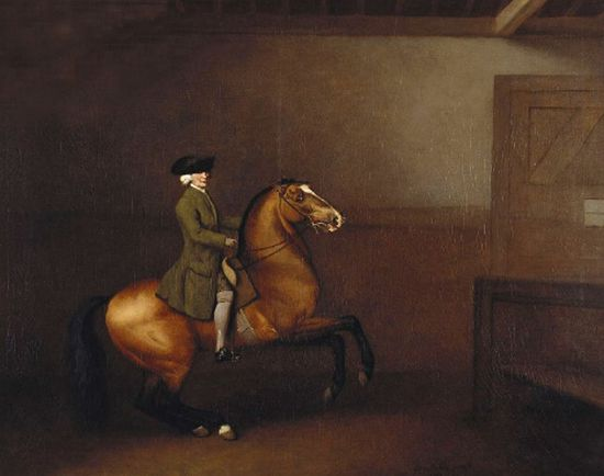 George Stubbs Reproductions-Portrait of a gentleman, 1791