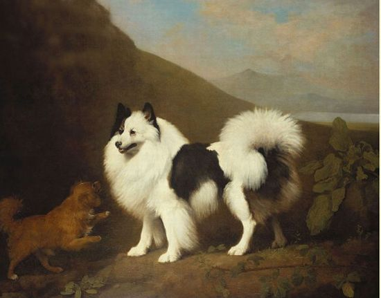 George Stubbs Reproductions-Fino and Tiny, 1791