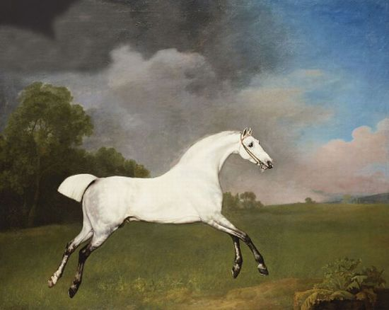 George Stubbs Reproductions-A grey horse, 1793