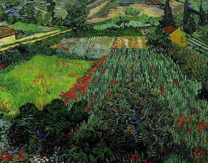 Paintings Reproductions Vincent van Gogh Field With Poppies, 1889