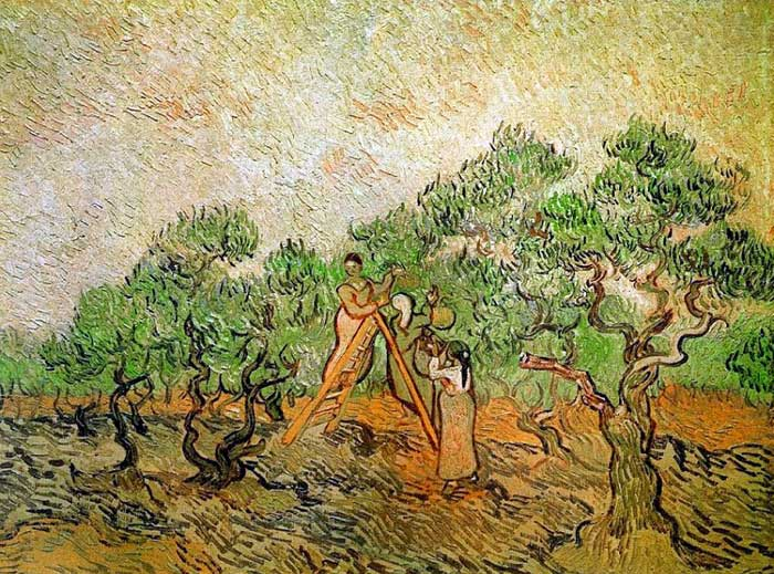 Paintings Reproductions Vincent van Gogh The Olive Picker, 1889