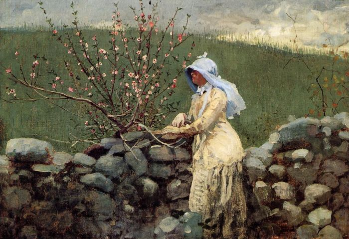 Paintings Reproductions Homer, Winslow Peach Blossoms, 1879