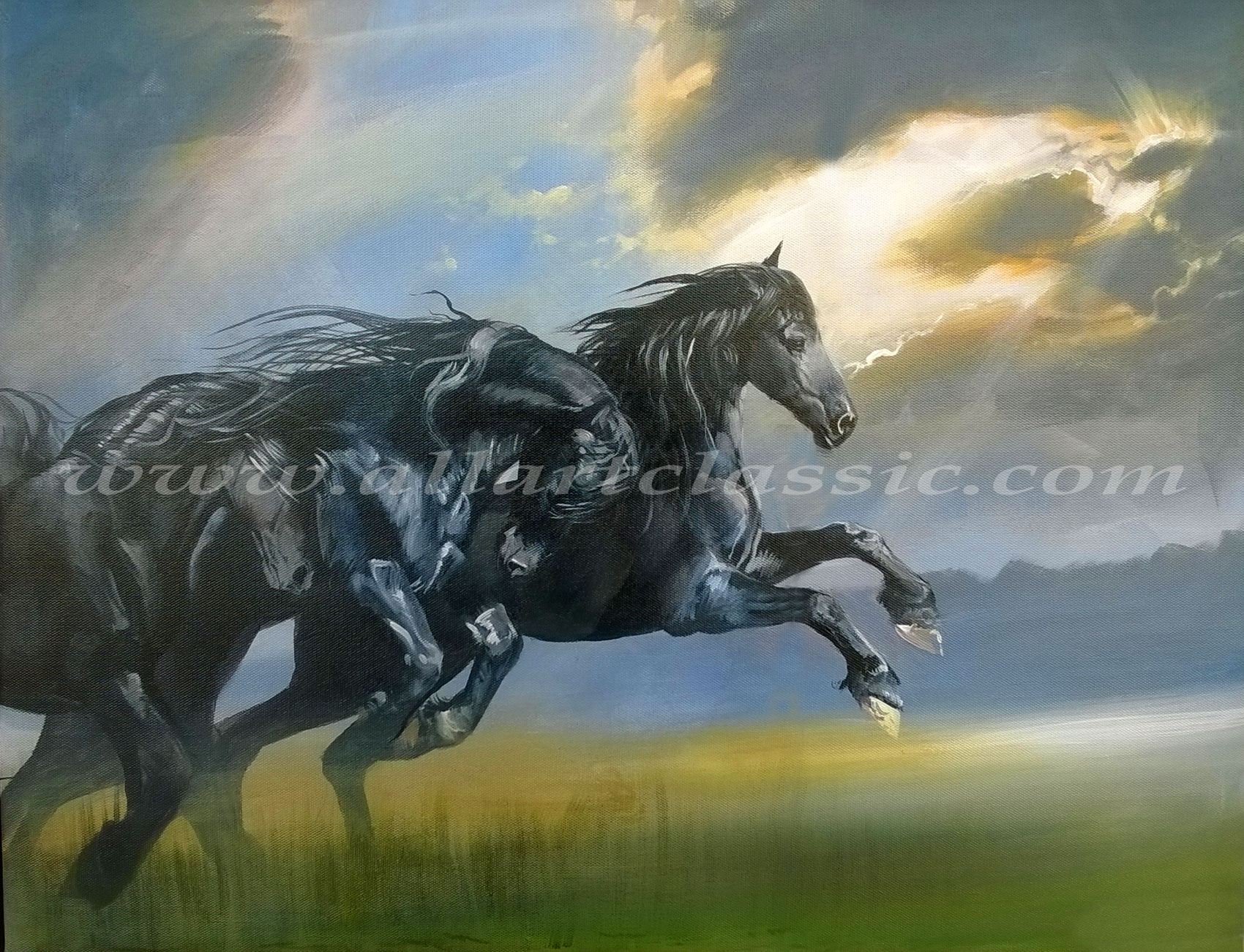 Original Art Wild Black Horses