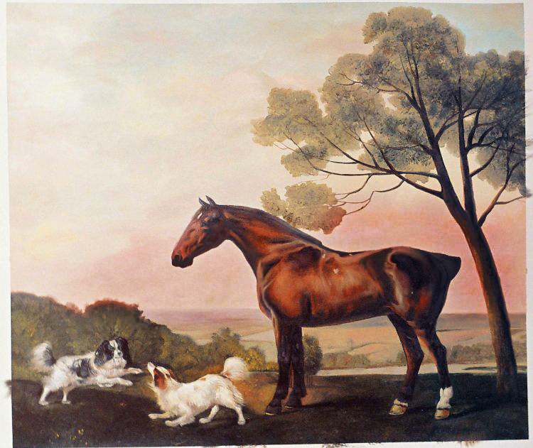 Oil Painting Reproductions of George Stubbs Paintings
